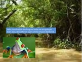 Rainforest Layers Powerpoint