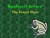 Rainforest Layers Review