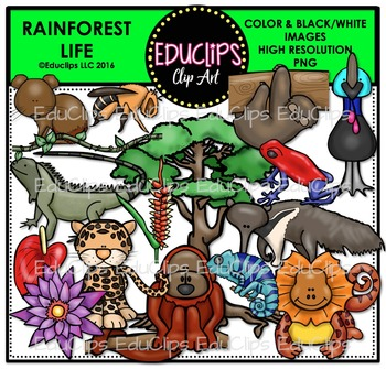 Rainforest Life Clip Art Bundle {Educlips Clipart}