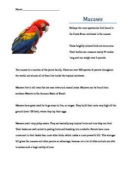 Rainforest Macaw Expository Writing Activity