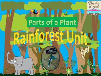 Rainforest- Parts of a Plant Craftivity