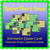 Rainforest Plants & Animals Display Cards (Included~Rainforest-MapMuralMuseum)