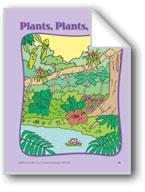 Rainforest Plants: Circle-Time Book