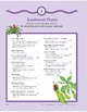 Rainforest Plants: Language and Math Activities
