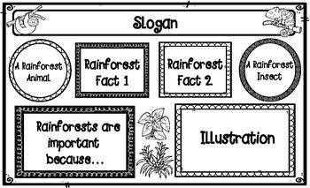 Rainforest Poster Project Graphic Organizer