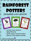 Rainforest Posters and Activity