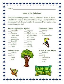 Rainforest Products Lesson Plan