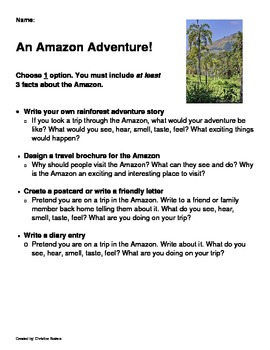 Rainforest Project - Differentiated Instruction
