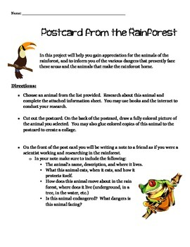 Rainforest Research - Postcard from the Rainforest