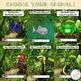 Digital Rainforest Animal Research