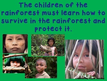 Rainforest Review PowerPoint