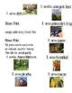 Rainforest Scavenger Hunt