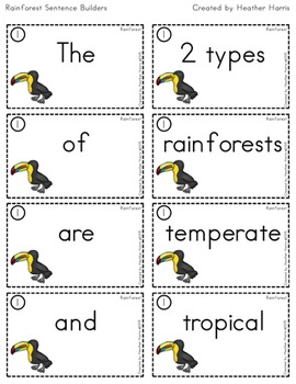 Rainforest Sentence Builders