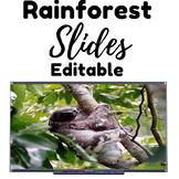 Rainforest Editable Slideshow
