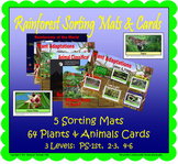 Rainforest Sorting Mats and Cards (Included in Rainforest: Map Mural Minimuseum)