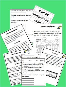 Science Unit: The Rainforest: Learn about the layers of the rainforest
