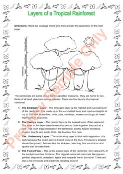 Rainforest Thematic Unit Grades 3-4  (US English Version)