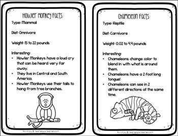 Rainforest Thematic Unit- No Prep, Just Print!