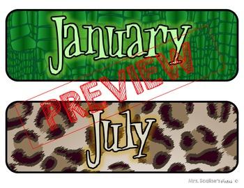Rainforest Theme Calendar Set- editable