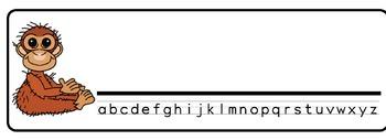 Rainforest Theme Desk Nameplates (Set of Four)