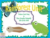 Rainforest Themed- Frog & Butterfly Life Cycle Crafts