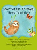 Rainforest Unit:  Three Toed Sloth