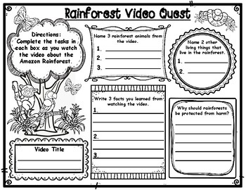 Rainforest Video Quest
