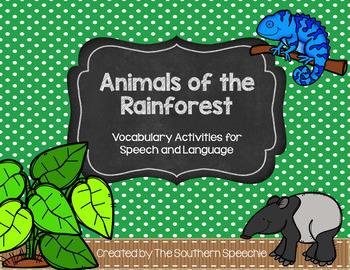 Rainforest Vocabulary Unit