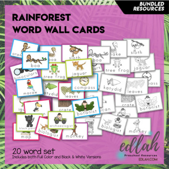 Rainforest Vocabulary Word Wall Cards (set of 20) - BUNDLE