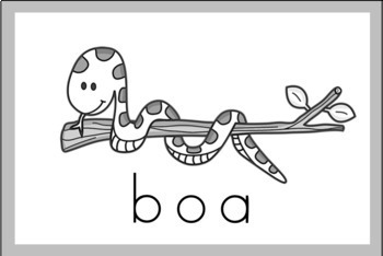 Rainforest Vocabulary Word Wall Cards (set of 20) - Black & White Version