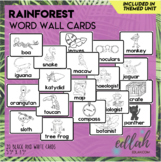 Rainforest Vocabulary Word Wall Cards (set of 20) - Black & White-Version#1