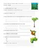 Rainforest Webquest (animals / ecosystems)