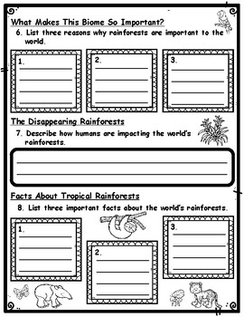 Rainforest Webquest