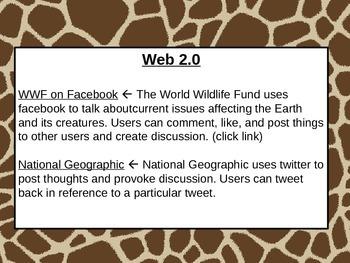 Rainforest Webquest Part 4