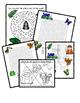 Rainforest - Word Searches, Maze and Puzzles!