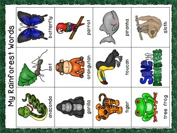 Rainforest Word Wall Cards & Personal Word Wall