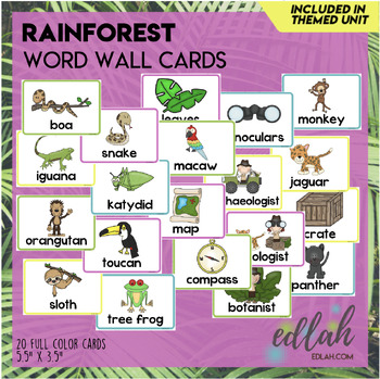 Rainforest Vocabulary Word Wall Cards (set of 10)