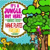 Rainforest and Jungle Themed Name Plates **editable**  FREEBIE!