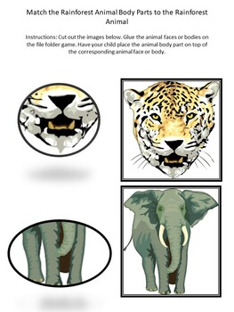 Rainforest and Jungle Toddler and Preschool Pack