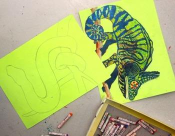 Rainforest animals ala sgrafitto