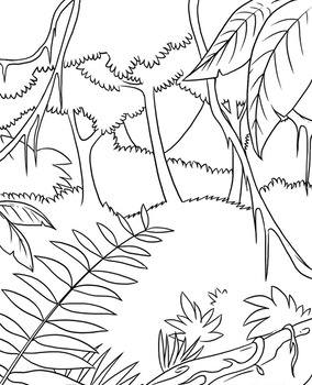 Rainforest background - colouring template