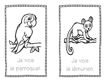 Rainforest booklet - FRENCH