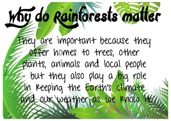 Rainforest information fact posters - Sustainability