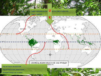 Rainforest introduction powerpoint