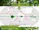 Rainforest introduction powerpoint