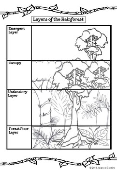 photo relating to Rainforest Printable known as Rainforest Worksheets Academics Pay back Instructors
