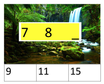 Rainforest theme number sequencing