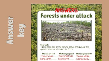 Rainforest worksheets, complete with answer key