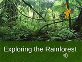 Rainforest/The Lorax