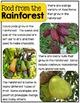 Rainforests- a nonfiction unit